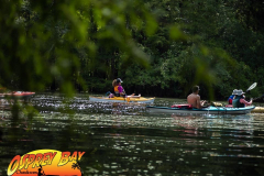 Hillsborough-river-aug-2021-24