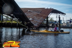 Homosassa-River-2020-81